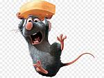 kisspng-ratatouille-the-walt-disney-company-film-pixar-wal-rat-5abb1d6fad0e42.6158411415222122077088